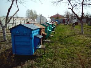 Продаю пчелосемьи с ульями на 16 рамок в комплекте