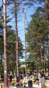 Спил сложных деревьев, на кладбище, вблизи строений, ЛЭП