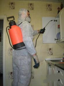 Обработка квартир и помещений от тараканов мышей. клопов.