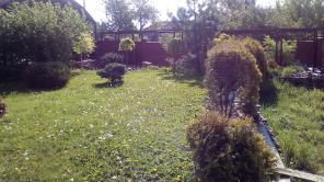 Уборка территории, участков и огородов. Донецк