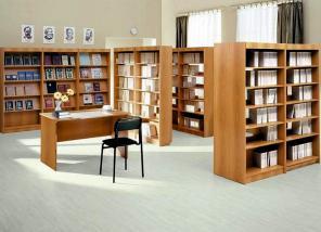 Изготовим общую школьную мебель