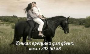 Романтическая прогулка на лошадях для двоих!