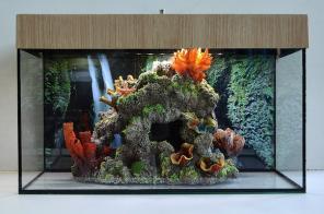 Аквариум с рифом продам