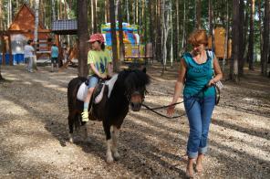 Лошади и пони на заказ
