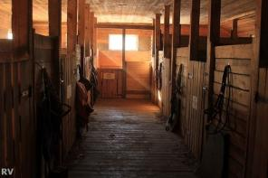 Постой для частных лошадей. Аренда, долевая аренда, заездка лошадей.