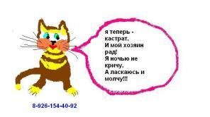 Кастрация котов, кобелей недорого, на дому. москва