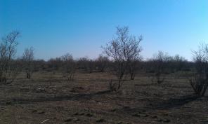 Продам большой земельный участок 9 га возле Евпатории