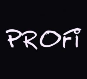 Веб-студия «ПРОФИ» занимается созданием сайтов в Подольске