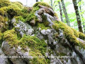 Ландшафтный природный камень без посредников