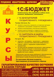 Профстандарт Бухгалтер. Курсы 1С: Бюджет Пушкино - Ивантеевка - Щелков