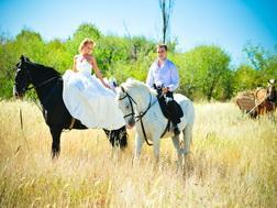 Верховая езда, лошади, конные прогулки, карета, фотосессии с лошадьми.