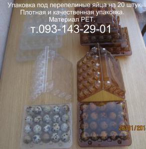 Пластиковая упаковка под перепелиные яйца