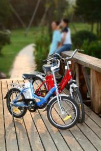 Электротранспорт для взрослых и детей, электромоторы, аккумуляторы.
