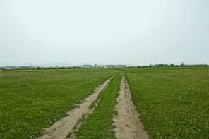 Продам земельный участок 43 гектара