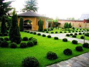 Благоустройство и озеленение, посадка деревьев