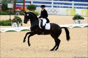 Катание на лошадях, тренажерный зал, сауна