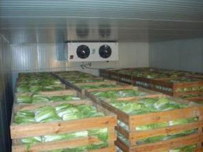Холодильные камеры - аренда, теплые и сухие склады - аренда