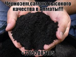 Чернозем горный с доставкой