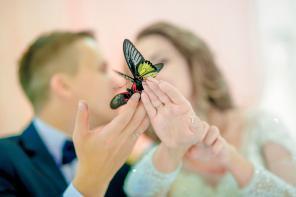 Тамада Ведущий Свадьба Юбилей Недорого! Каменск – Уральский
