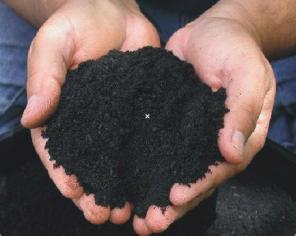 Поиски и оценка сапропеля и илов для производства удобрений