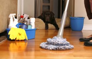 Уборка в жилых комнатах и прочих бытовых помещениях