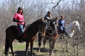 Катание на лошадях в Ростове, активный отдых, сюрприз,