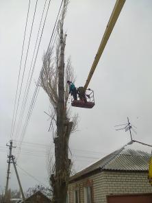 Спил, удаление деревьев