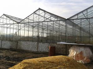 Тепличное хозяйство, Ливны (Орловская область)