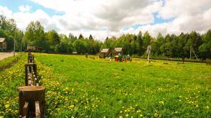 Продажа земли в Лен. области по СЕРТИФИКАТУ для МНОГОДЕТНЫХ СЕМЕЙ