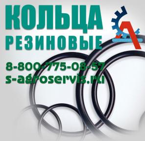 Маслостойкие резиновые кольца