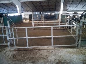 Калитки, ограничение скотопрогонов