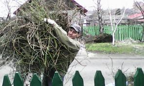 Уборка огородов, участков и территории в Донецке