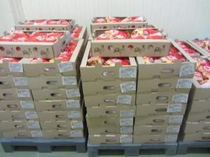 Хранение МЯСА и мясопродукции. Одесский холодильник склады и камеры