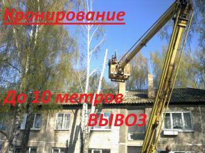 Кронирование деревьев до 10 метров