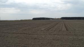 Предлагаем земельный участок 75 000 кв.м. под коттеджную застройку.