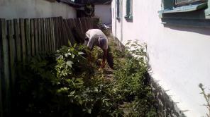 Уборка огородов, участков в Донецке