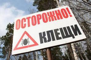 Обработка от клещей, акарицидная обработка в Крыму
