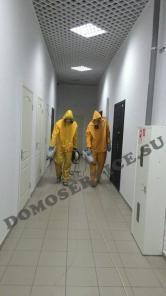 Организация санитарных работ по Крыму