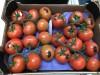 Продаем томаты из Испании
