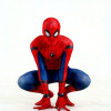 Аниматоры человек паук на дом 7500