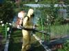 Уничтожение мух ос комаров избавление от насекомых