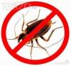 Комары Мухи истребление в Самаре и области