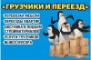 Крепкие и Быстрые Грузчики / Газели