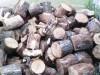 Дрова (дуб, берёза, сосна)