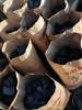 Древесный березовый уголь производитель г Новокузнецк