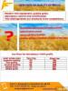Мука и отруби пшеничные оптом из Казахстана. Вкусная лепешка из детств