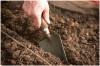 «БиоГрунт» - доставка почвогрунта по Москве и МО