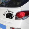 Виниловые наклейки на авто в Ростове